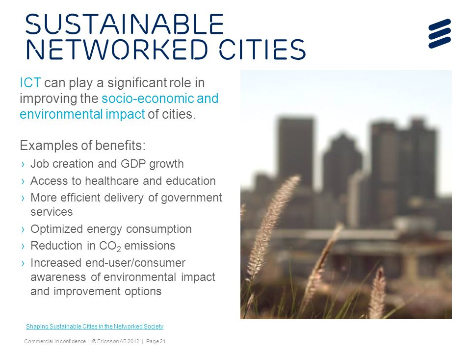 Sustainable Networked Cities