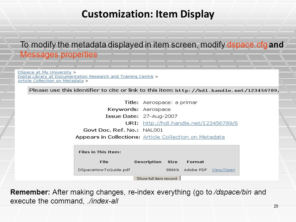 Customization: Item Display