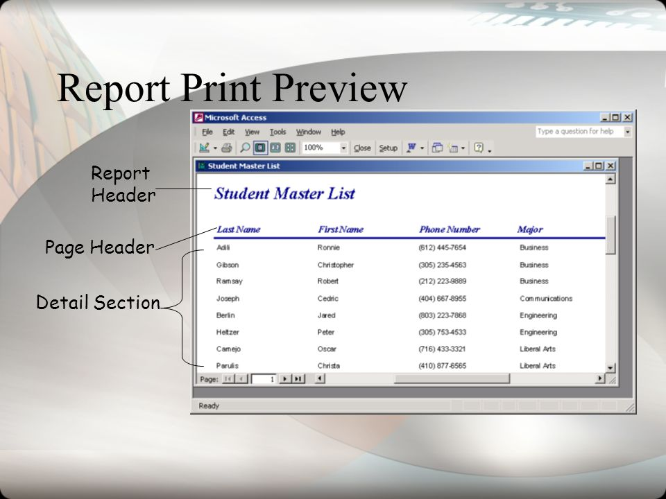 Report Print Preview Report Header Page Header Detail Section