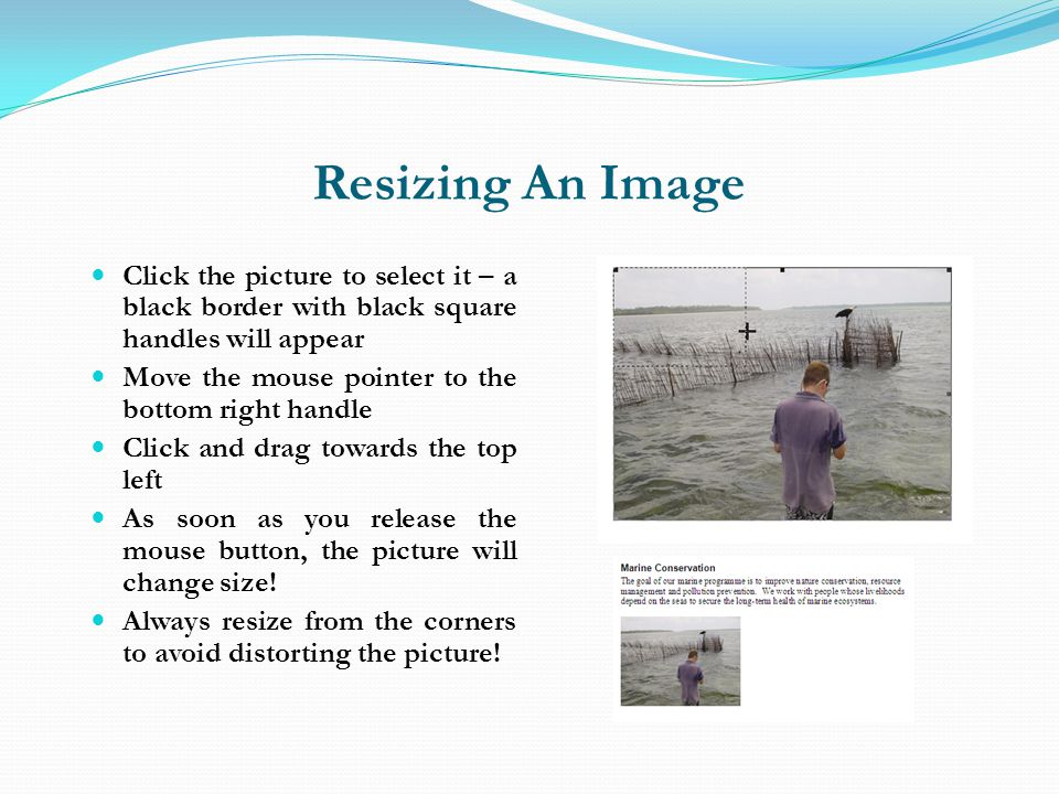 Resizing An Image Click the picture to select it – a black border with black square handles will appear.