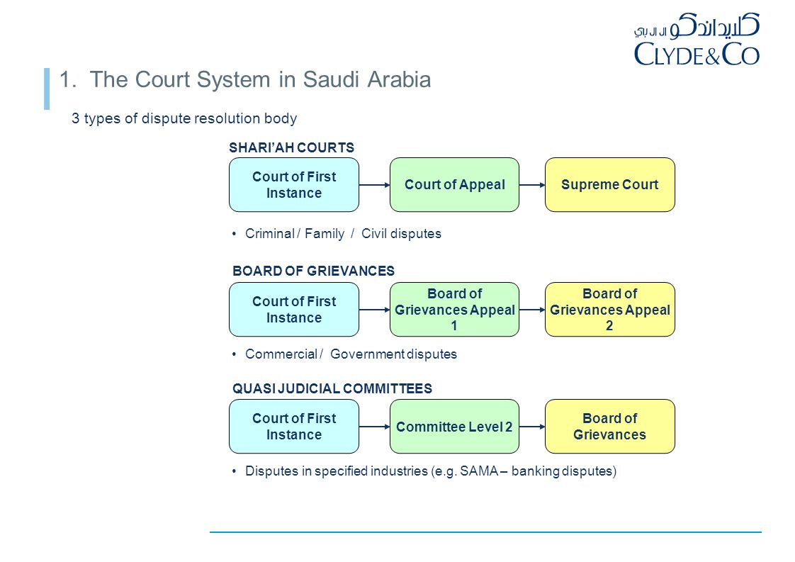 1. The Court System – detail