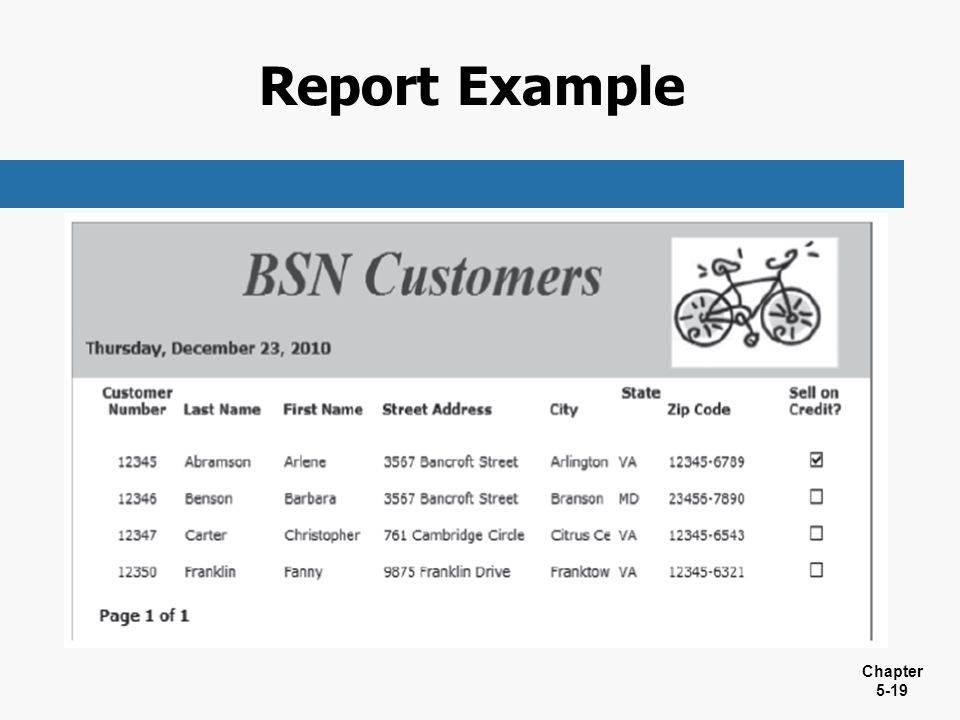 Report Example