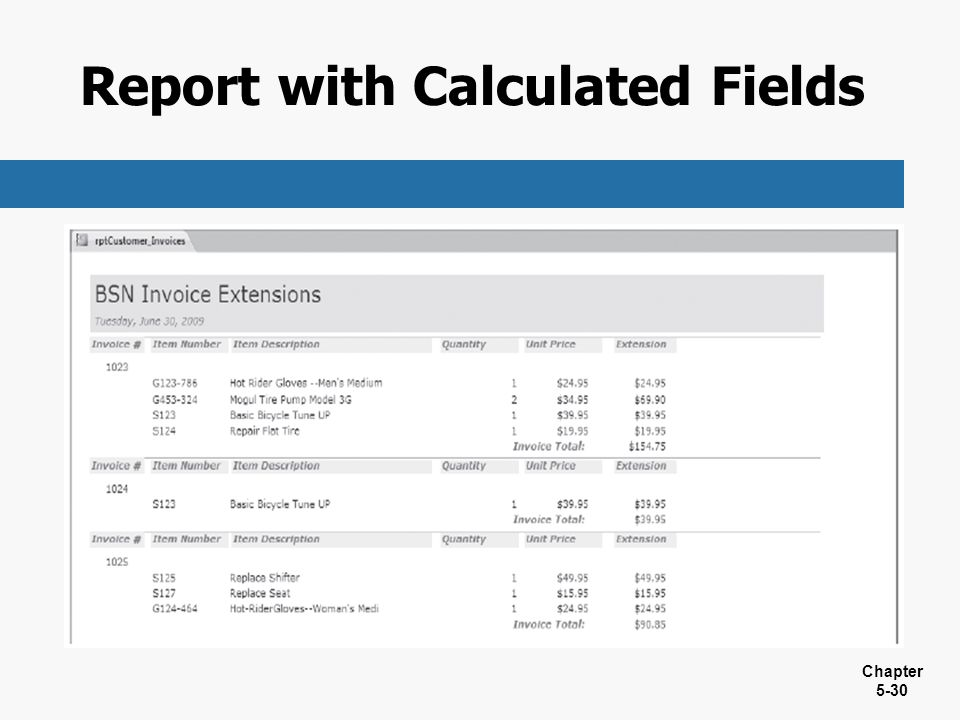 Report with Calculated Fields