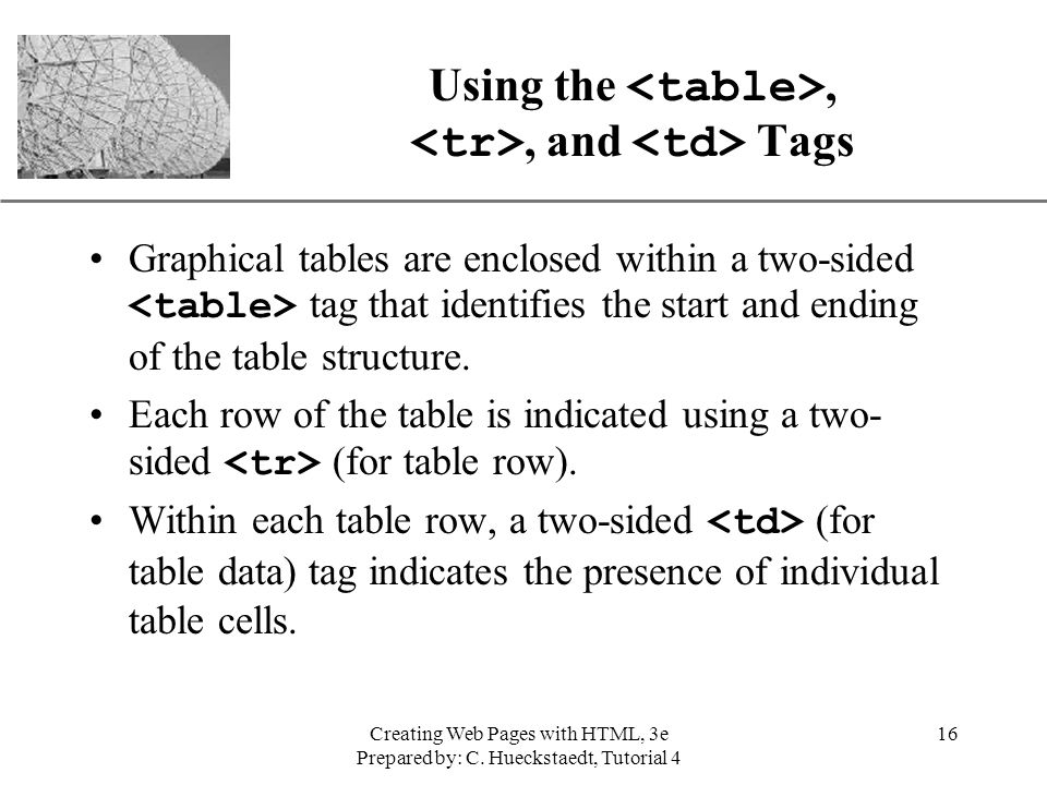 Using the <table>, <tr>, and <td> Tags