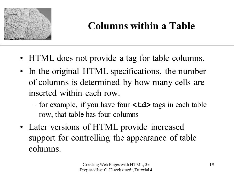 Columns within a Table HTML does not provide a tag for table columns.