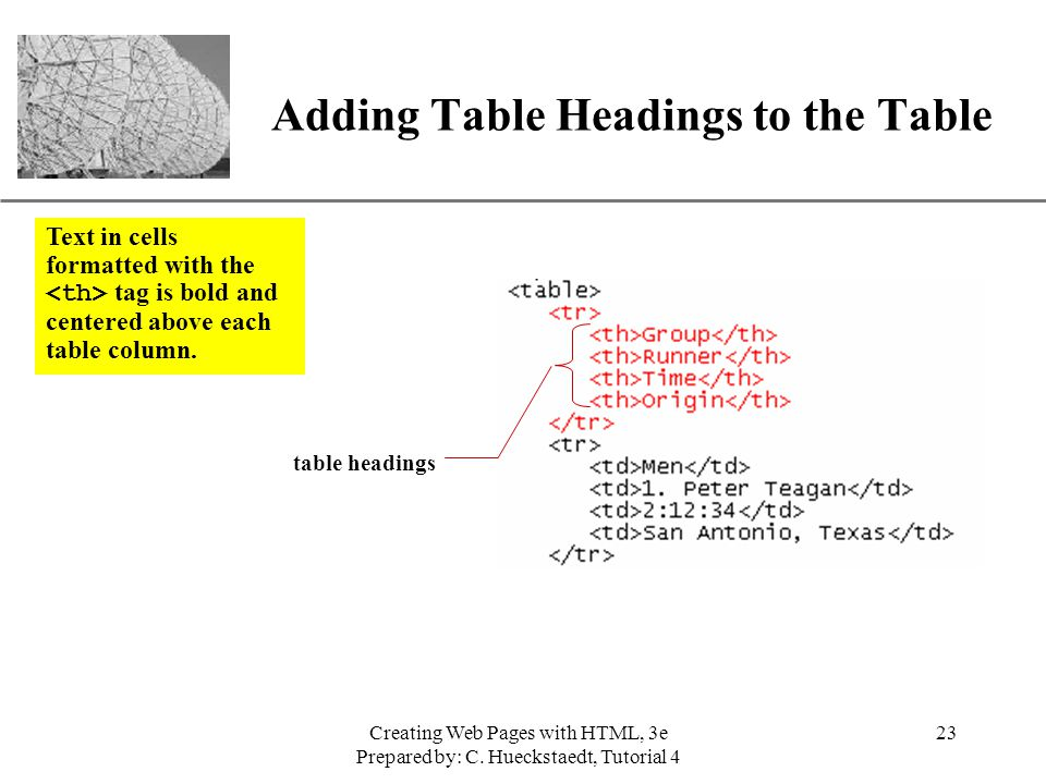 Adding Table Headings to the Table