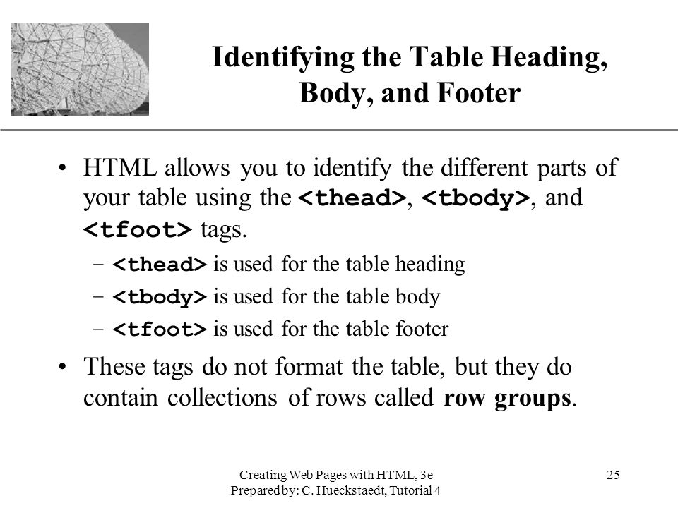Identifying the Table Heading, Body, and Footer