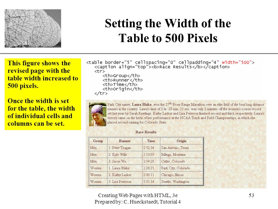 New Perspectives on Creating Web Pages with HTML - ppt download