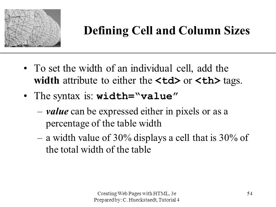 Defining Cell and Column Sizes