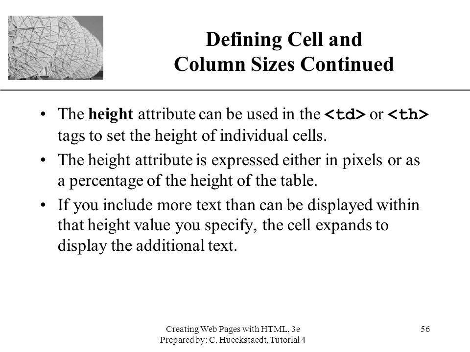 Defining Cell and Column Sizes Continued