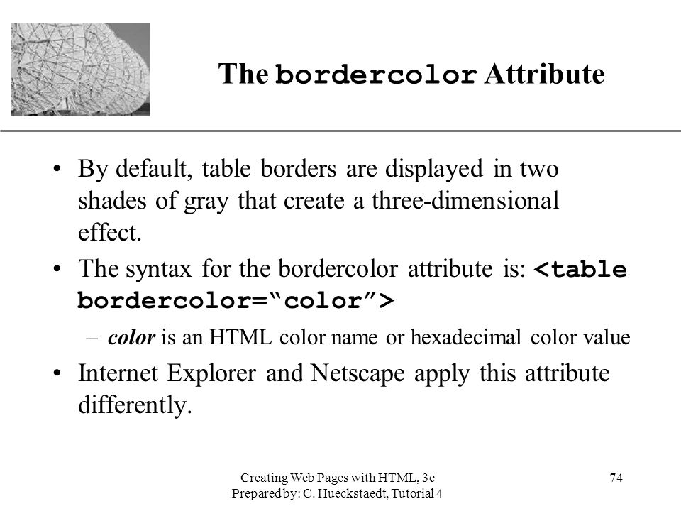 The bordercolor Attribute