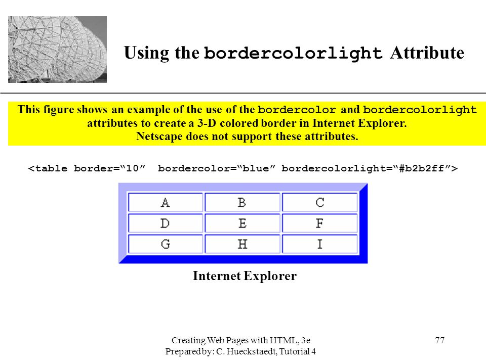 Using the bordercolorlight Attribute