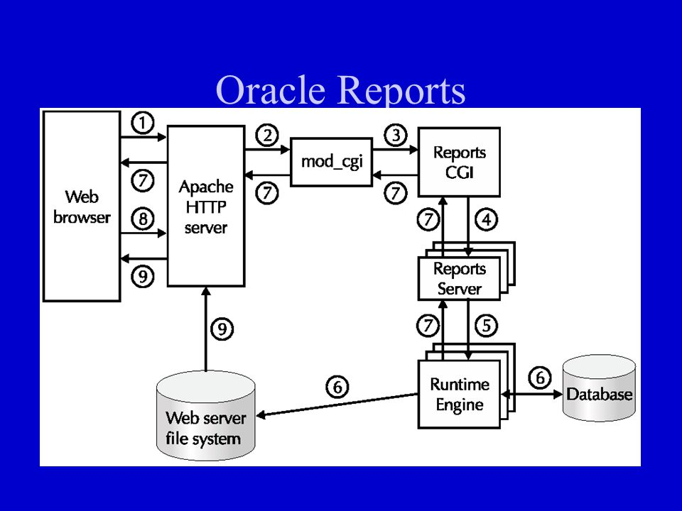 Oracle Reports