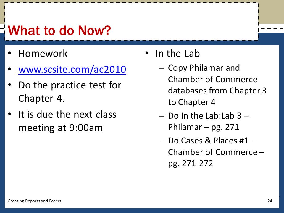 What to do Now Homework www.scsite.com/ac2010