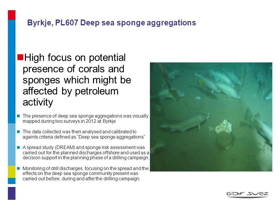 Byrkje, PL607 Deep sea sponge aggregations