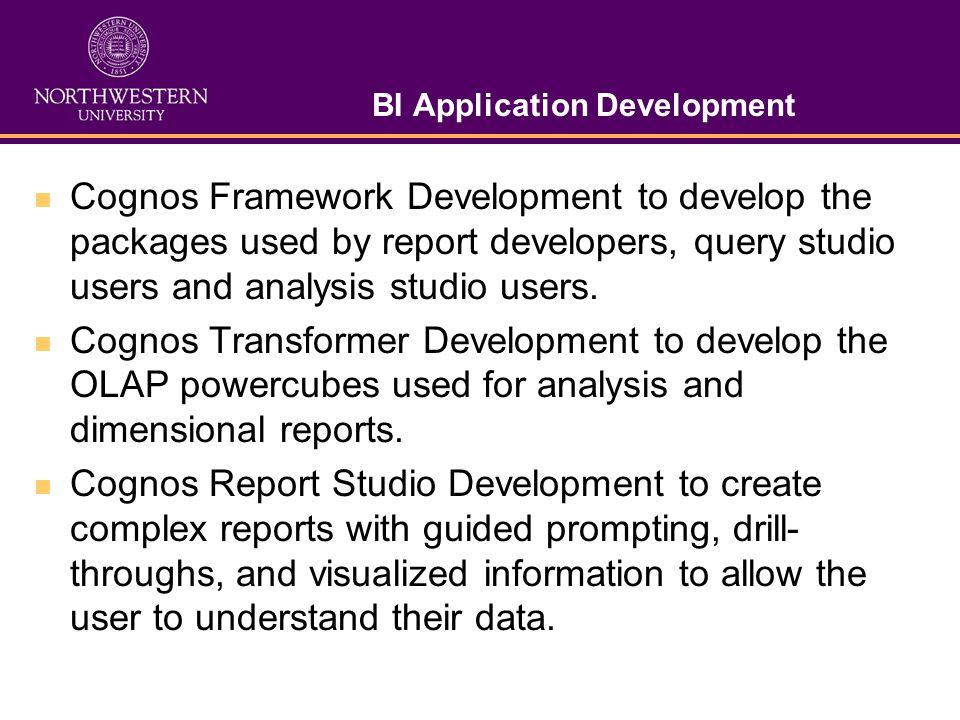 BI Application Development