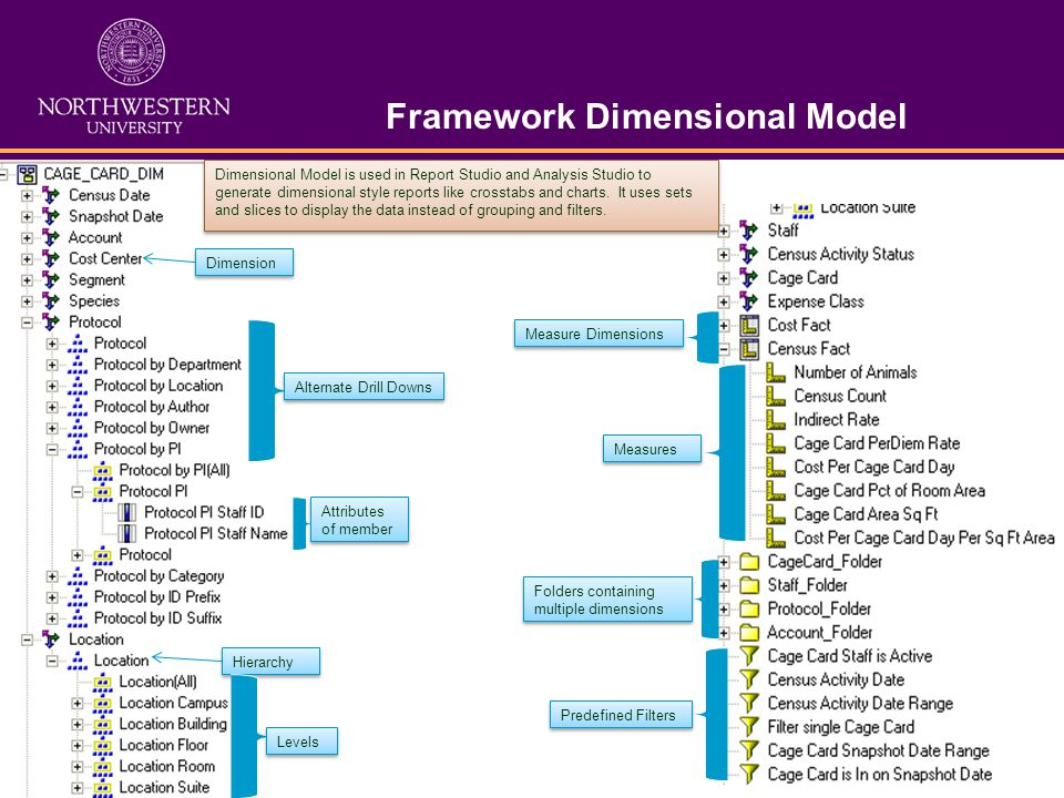 Framework Dimensional Model