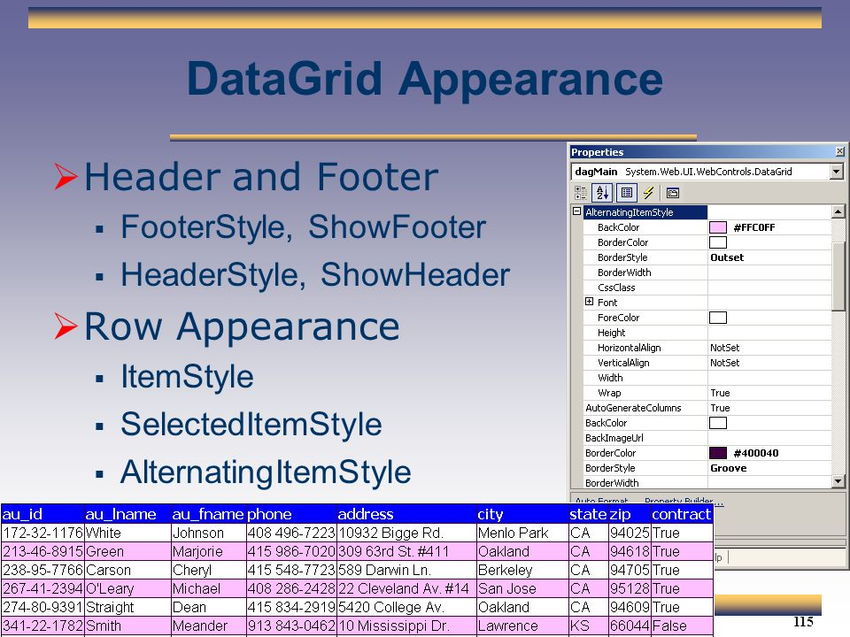 DataGrid Appearance Header and Footer Row Appearance