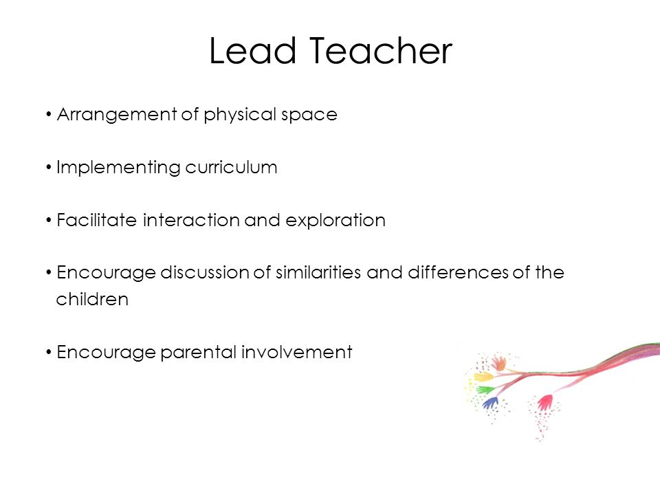 Lead Teacher Arrangement of physical space Implementing curriculum