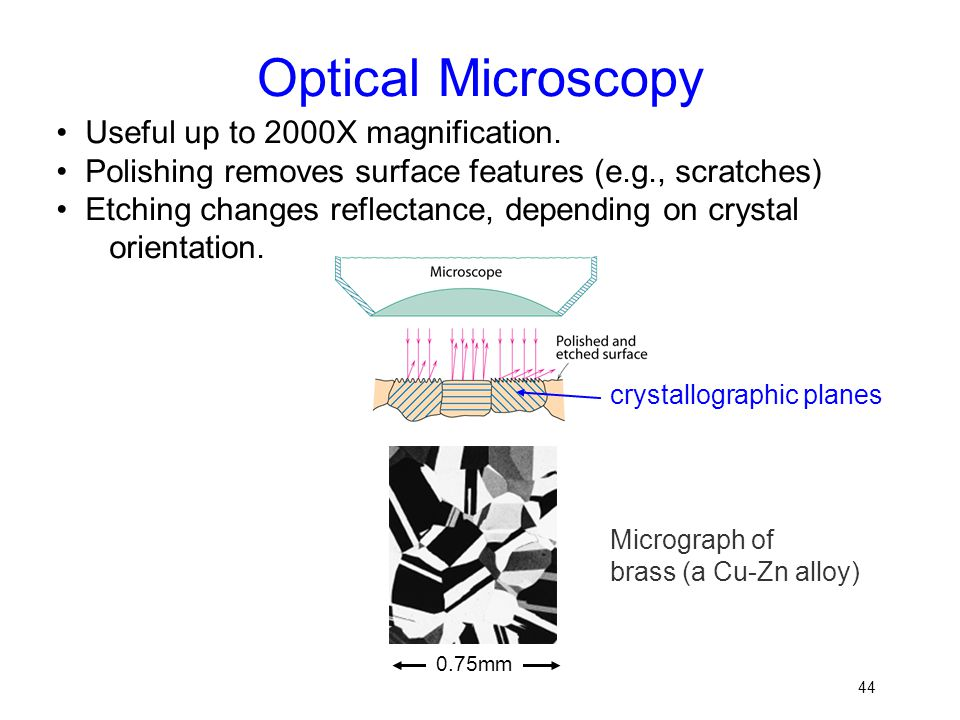 Optical Microscopy • Useful up to 2000X magnification.