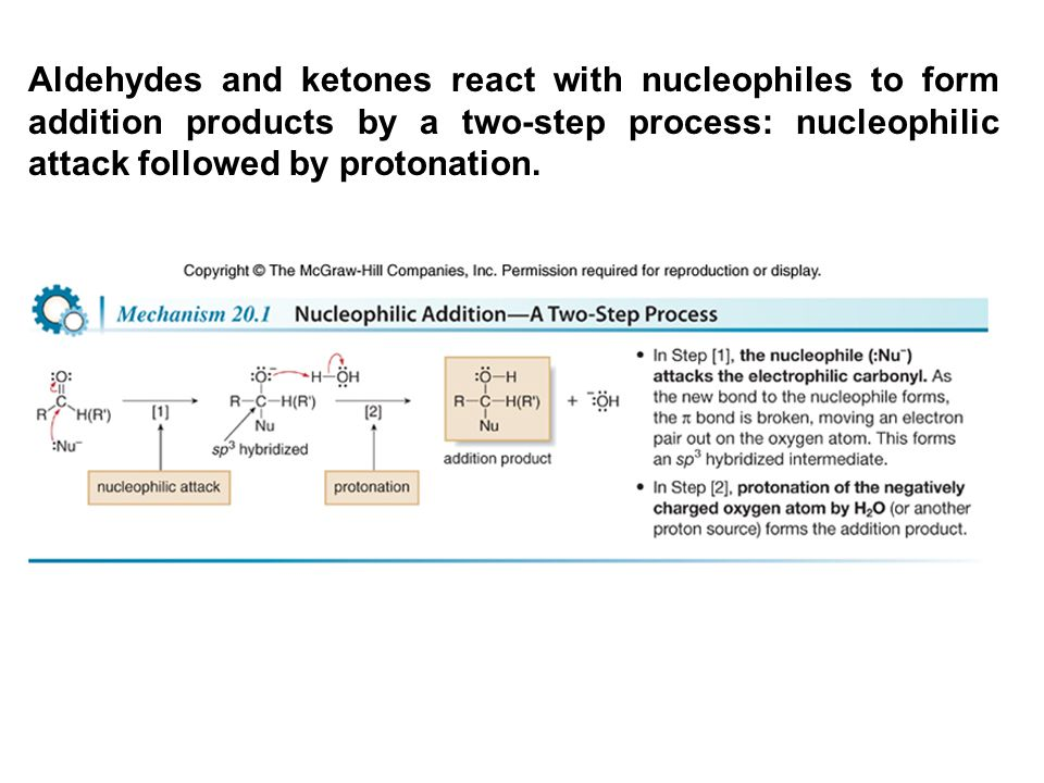 Aldehydes and ketones react with nucleophiles to form addition products by a two-step process: nucleophilic attack followed by protonation.