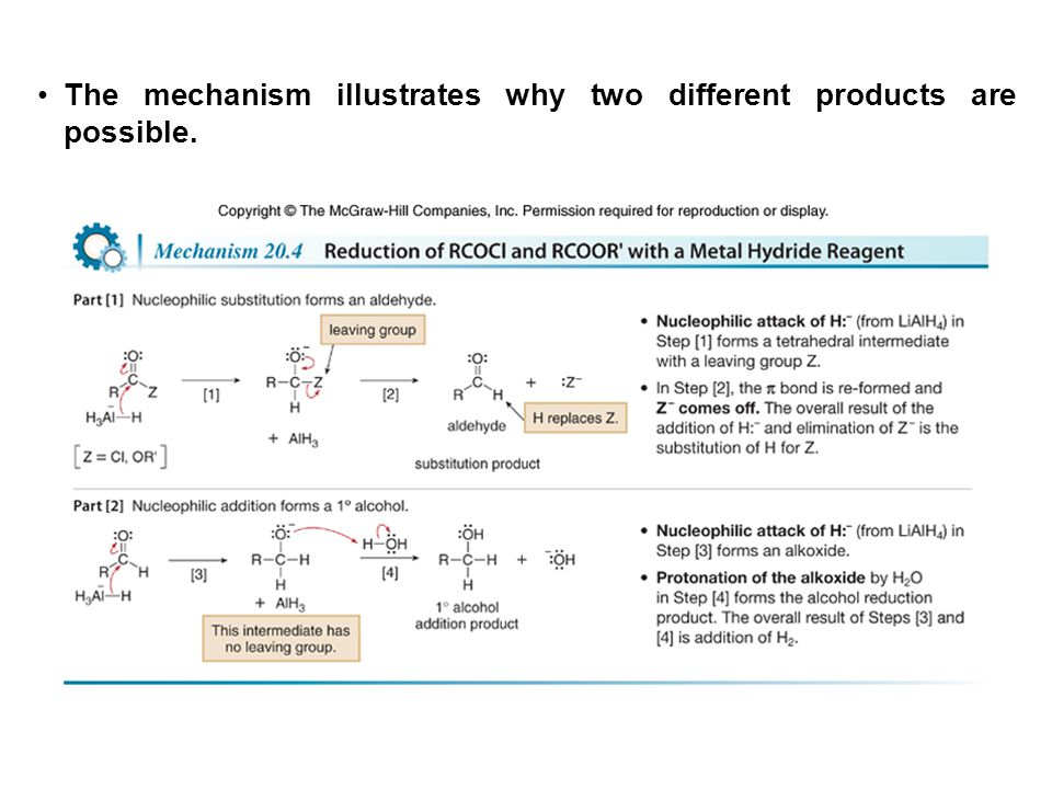 The mechanism illustrates why two different products are possible.