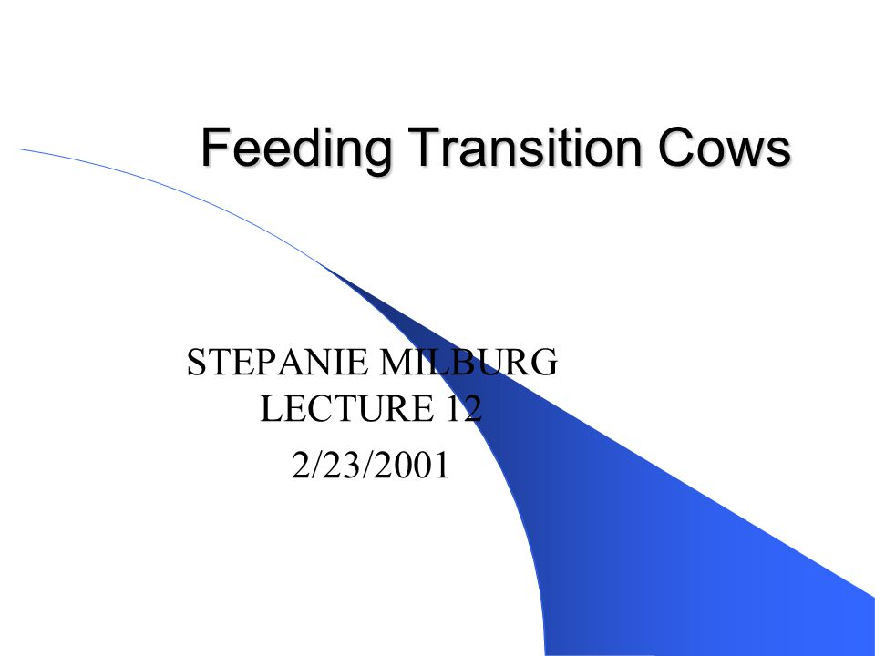 Feeding Transition Cows