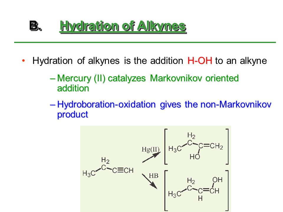 B. Hydration of Alkynes Hydration of alkynes is the addition H-OH to an alkyne. Mercury (II) catalyzes Markovnikov oriented addition.