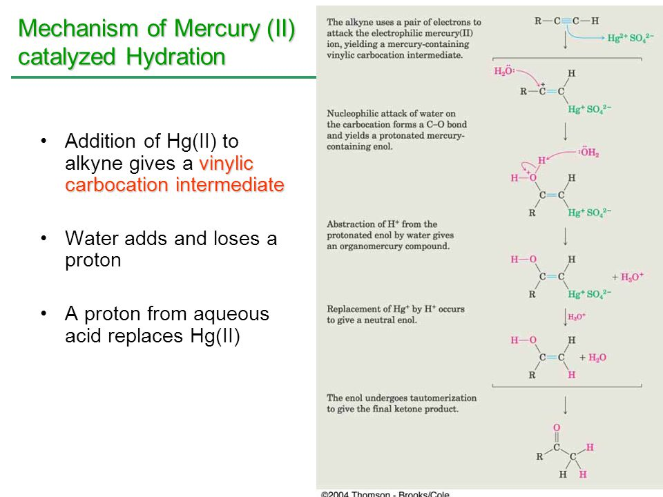 Mechanism of Mercury (II) catalyzed Hydration
