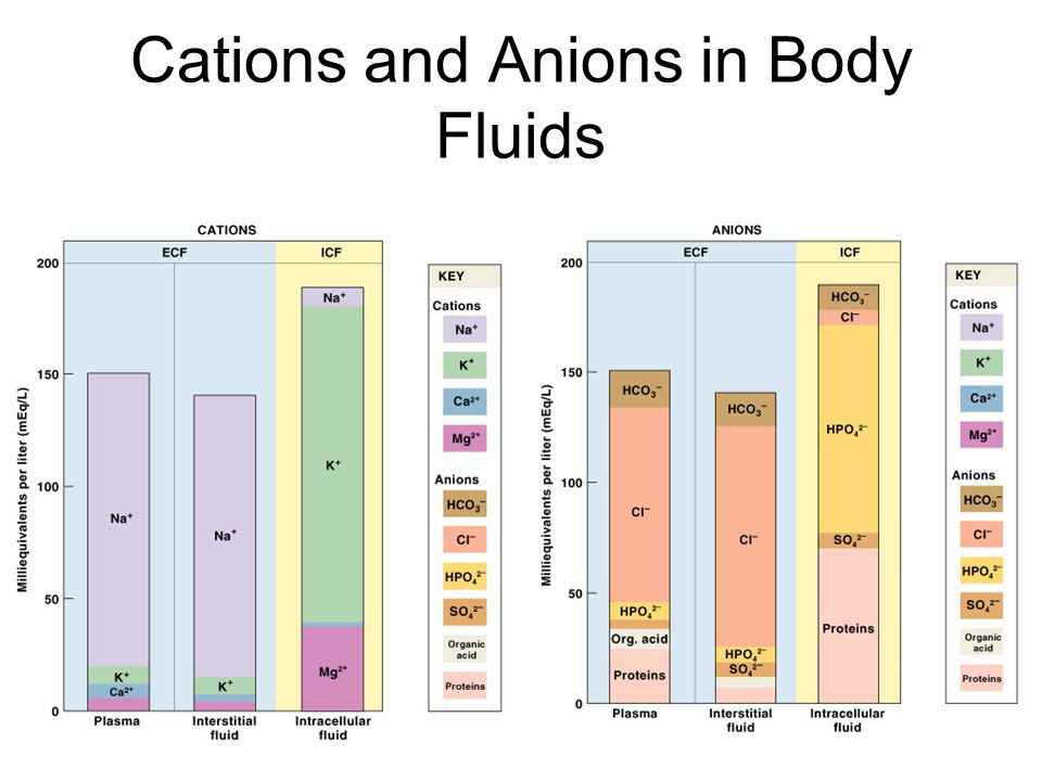 Cations and Anions in Body Fluids