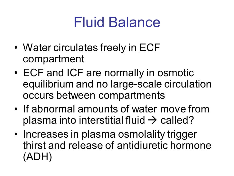 Fluid Balance Water circulates freely in ECF compartment