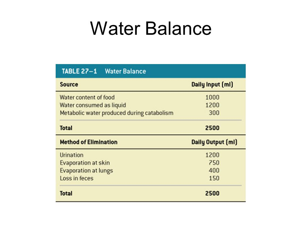 Water Balance Table 27–1