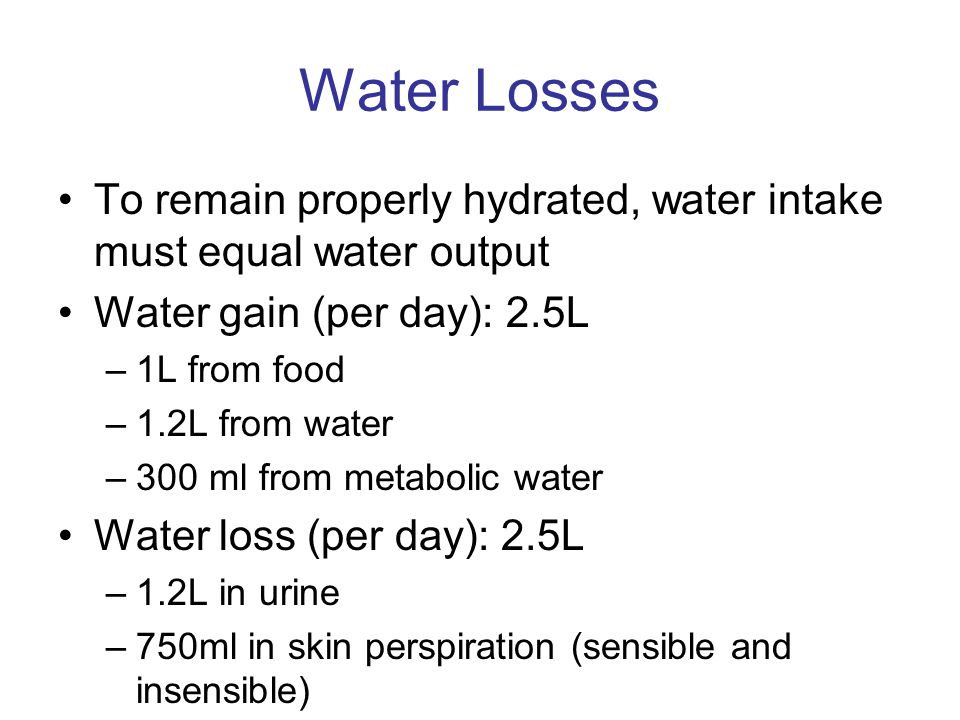 Water Losses To remain properly hydrated, water intake must equal water output. Water gain (per day): 2.5L.