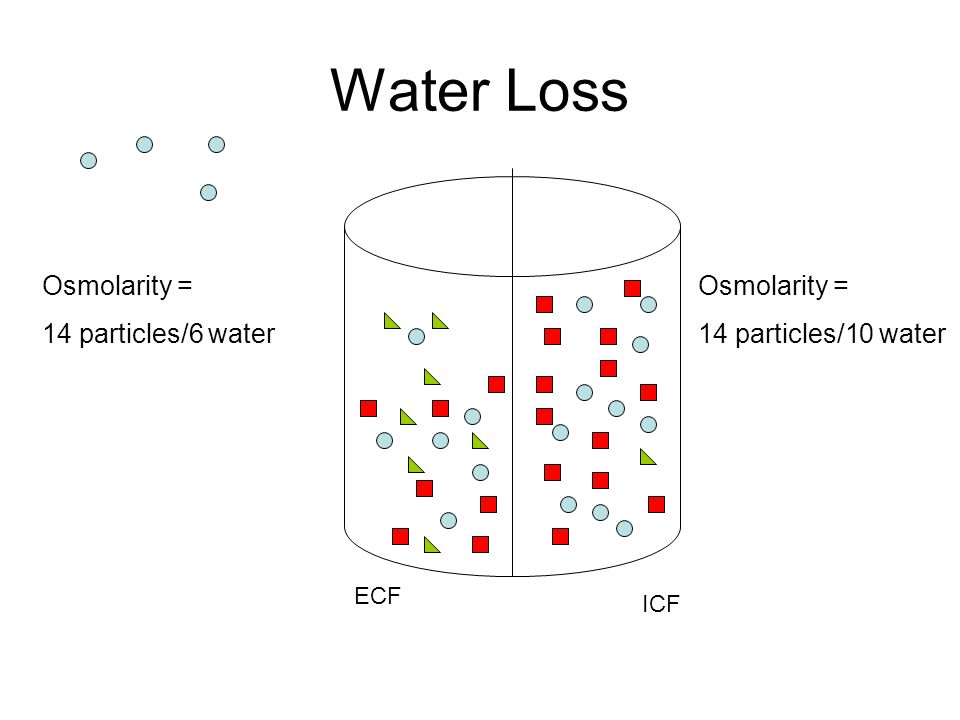 Water Loss Osmolarity = 14 particles/6 water Osmolarity =