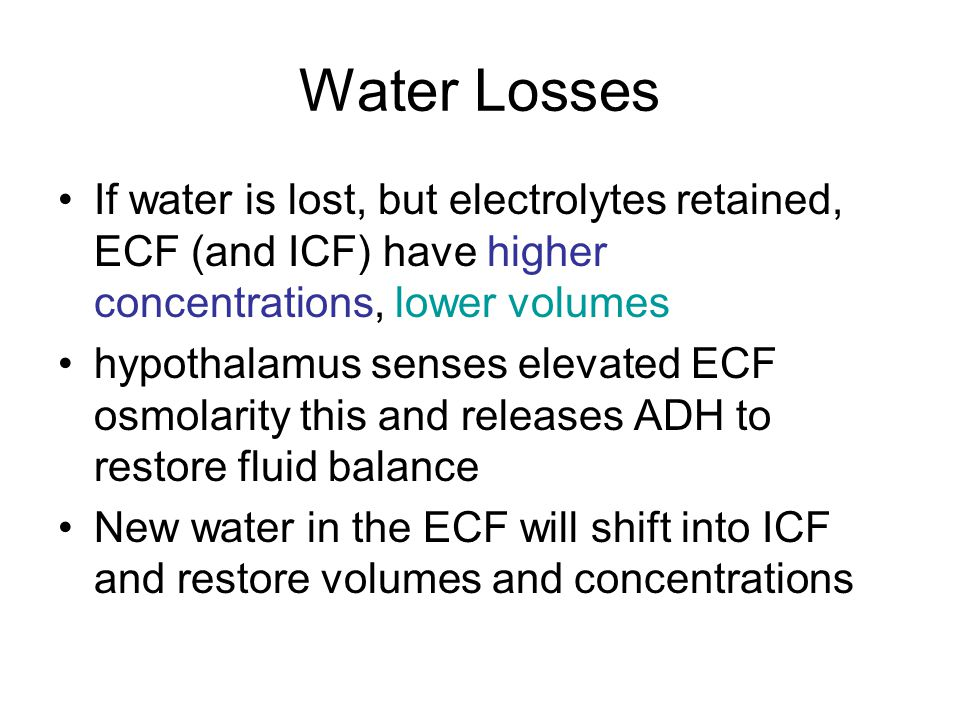 Water Losses If water is lost, but electrolytes retained, ECF (and ICF) have higher concentrations, lower volumes.