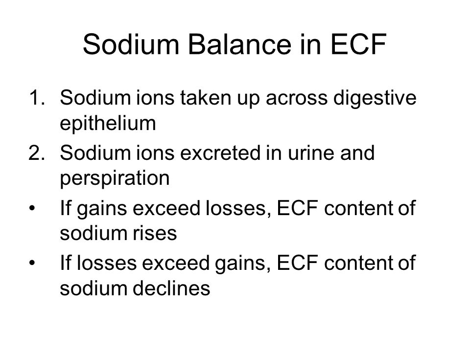 Sodium Balance in ECF Sodium ions taken up across digestive epithelium