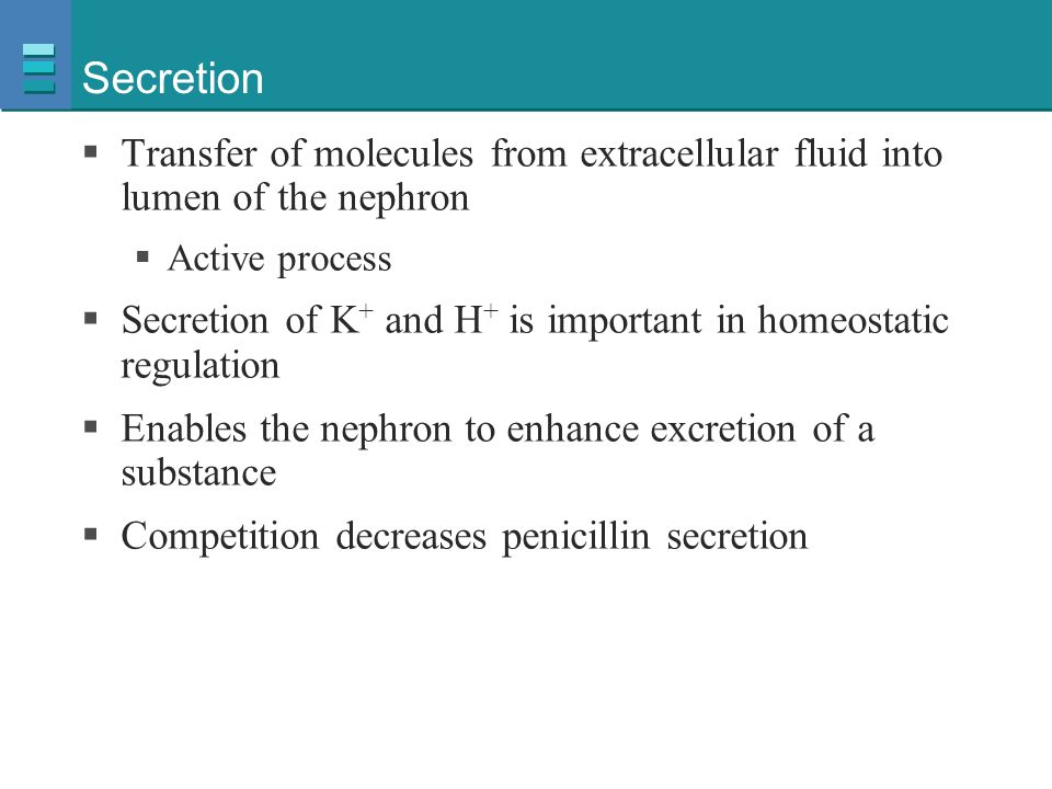 Secretion Transfer of molecules from extracellular fluid into lumen of the nephron. Active process.