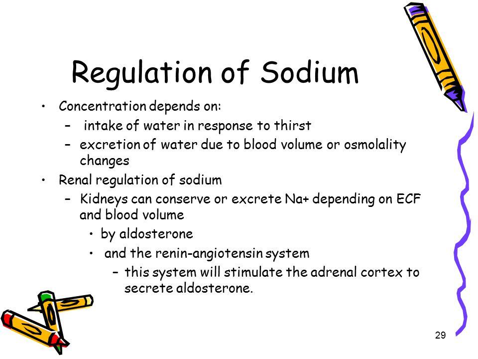 Regulation of Sodium Concentration depends on: