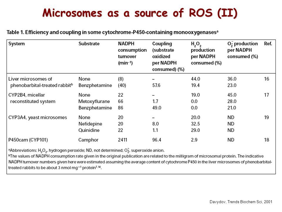 Microsomes as a source of ROS (II)