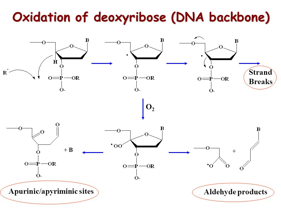 Oxidation of deoxyribose (DNA backbone)