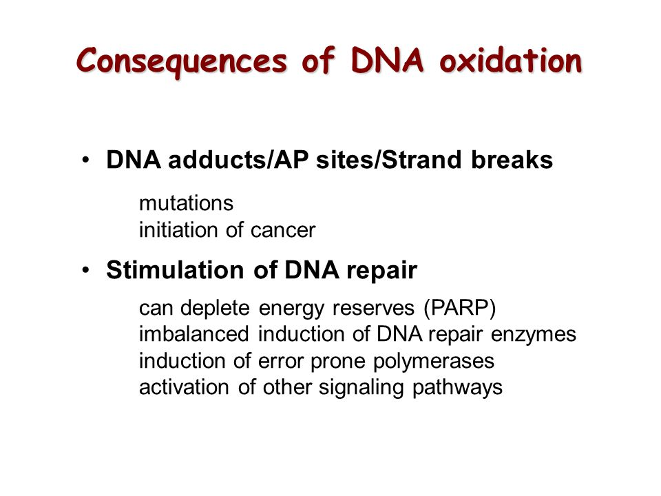 Consequences of DNA oxidation