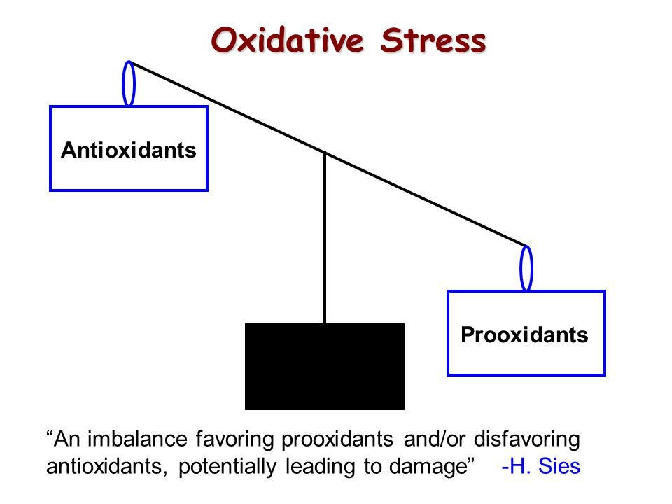 Oxidative Stress Antioxidants Prooxidants