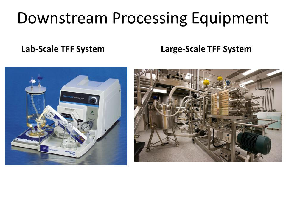 Downstream Processing Equipment
