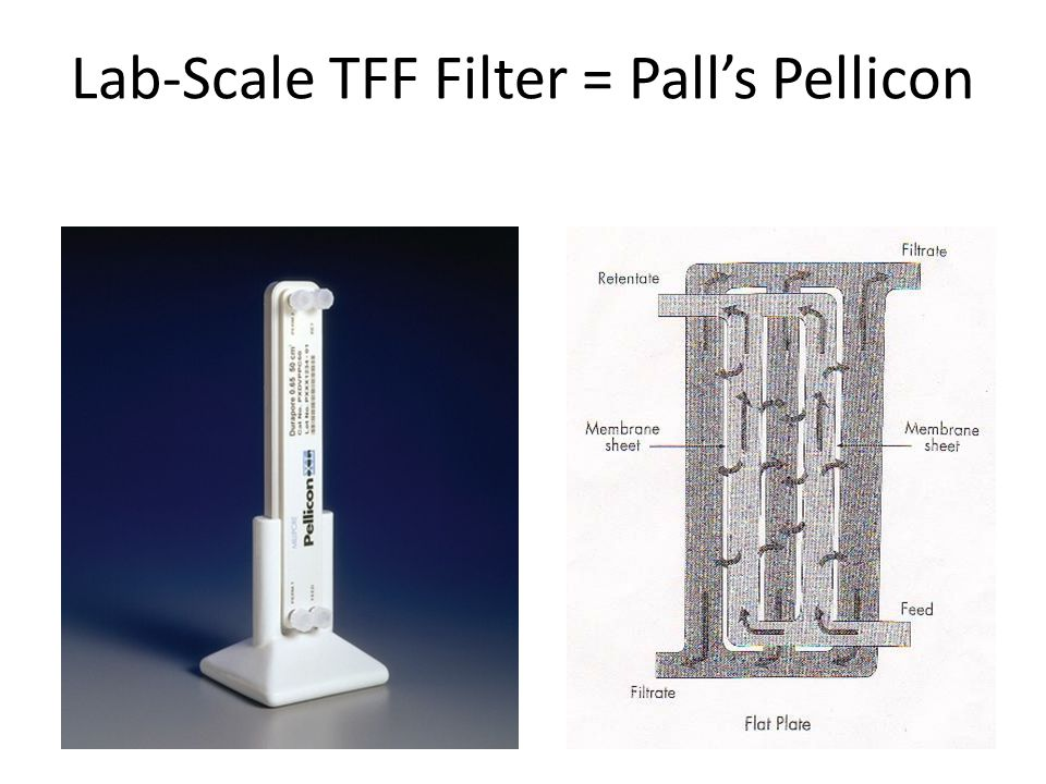 Lab-Scale TFF Filter = Pall's Pellicon