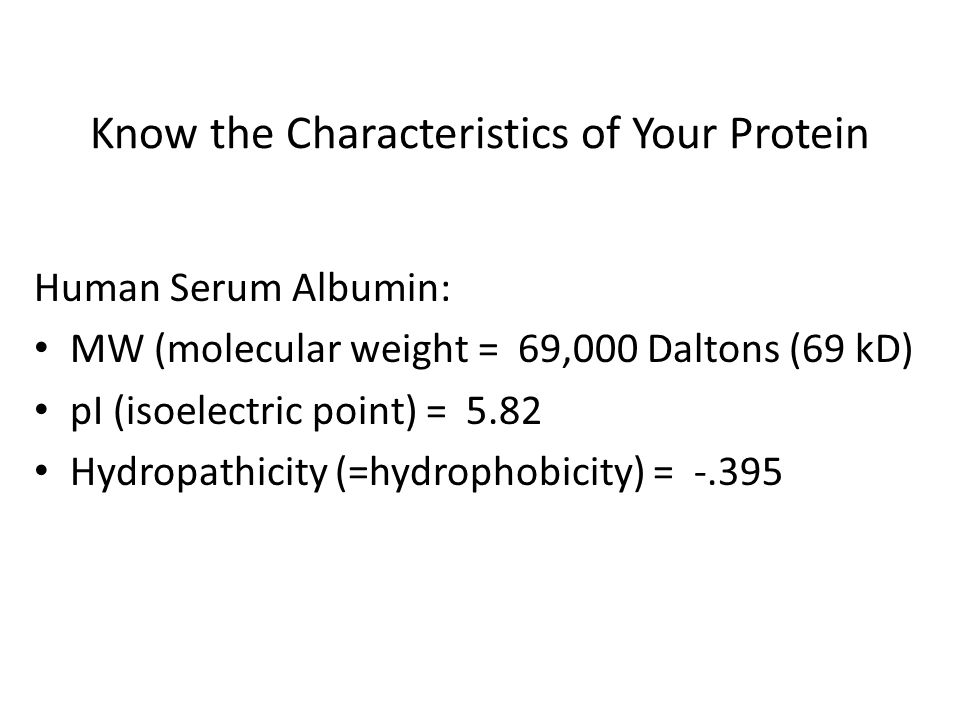 Know the Characteristics of Your Protein
