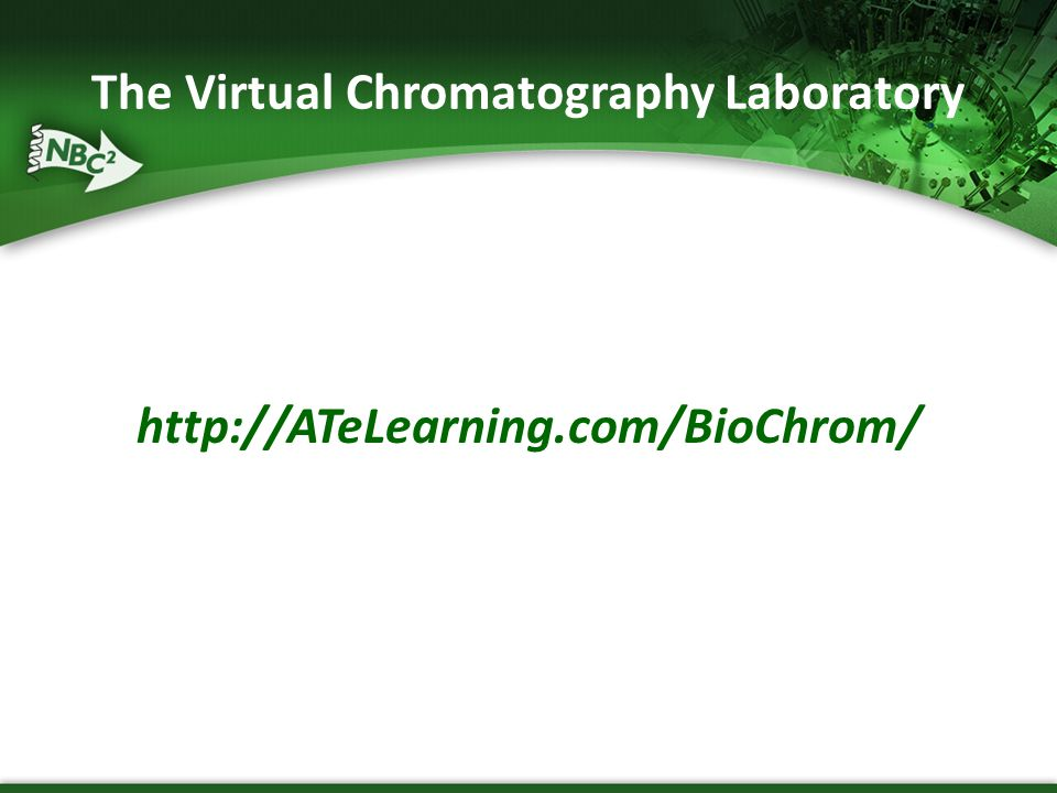 The Virtual Chromatography Laboratory