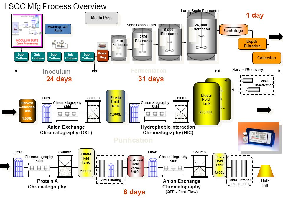 LSCC Mfg Process Overview