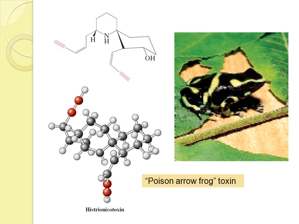 Poison arrow frog toxin