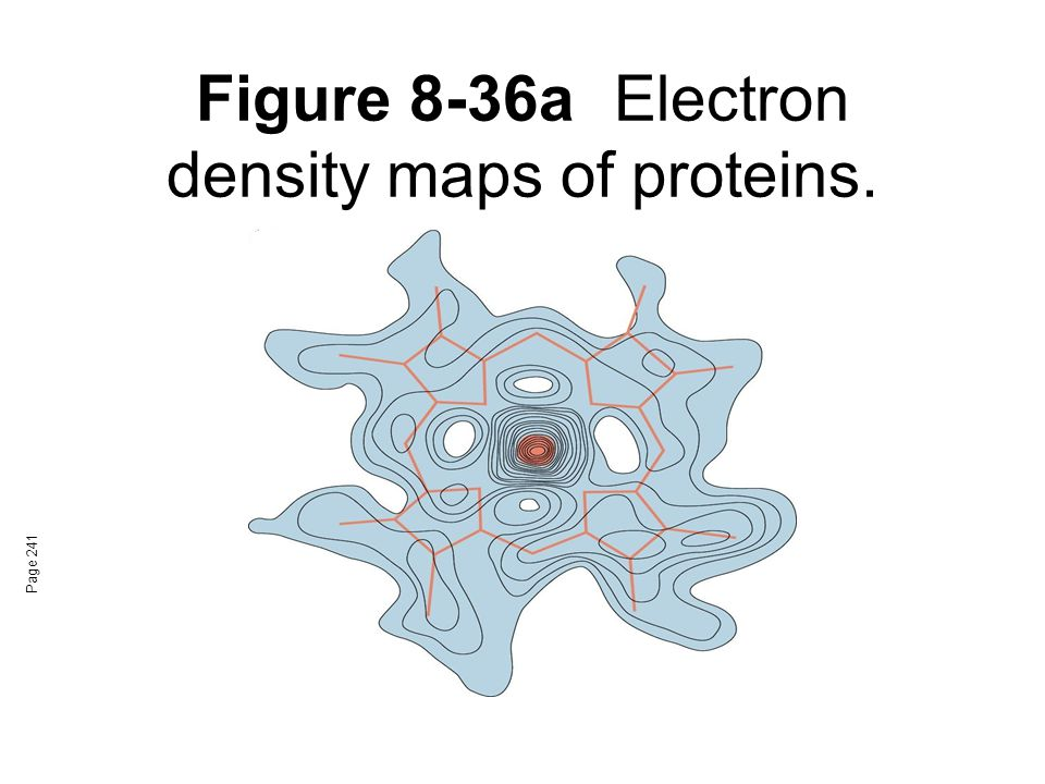 Figure 8-36a Electron density maps of proteins.