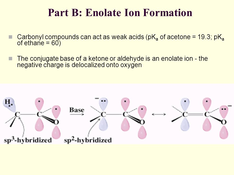 Part B: Enolate Ion Formation